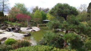 ボンの日本庭園